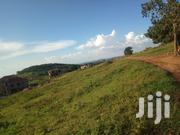 Kira Kimwanyi Beautiful Plot for Sell | Land & Plots For Sale for sale in Central Region, Kampala
