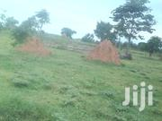 10 Acres of Waterfront Land on Sale at Buleebi 16 Km Off Katosi Road | Land & Plots For Sale for sale in Central Region, Mukono