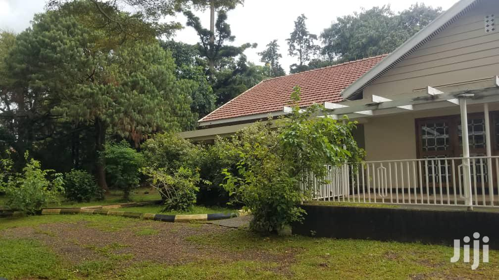 Archive: Bungalow on Sale in Mbuya