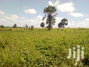 Residential Land For Sale | Land & Plots For Sale for sale in Nothern Region, Gulu