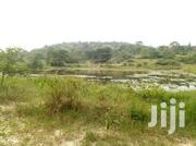 HOT And QUICK SALE 50 Acres On Sale In Mubende Just 10 Km | Land & Plots For Sale for sale in Central Region, Mubende