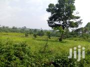 Plot for Sale   Land & Plots For Sale for sale in Central Region, Mukono