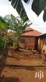 There Is A Land Title For The Land 100x40 Ft | Houses & Apartments For Sale for sale in Central Region, Wakiso