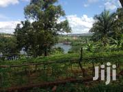 50 Decimals Land In Jinja Source For Sale | Land & Plots For Sale for sale in Central Region, Kampala