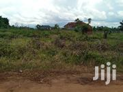 Land In Kira Along Mamerito Road For Sale | Land & Plots For Sale for sale in Central Region, Kampala