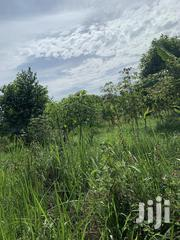 150 Acres Land In Kamwenge For Sale | Land & Plots For Sale for sale in Western Region, Kamwenge