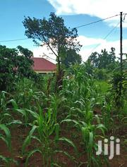 Land In Namugongo Bukerere For Sale | Land & Plots For Sale for sale in Central Region, Kampala