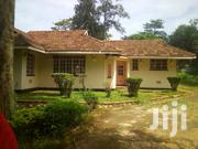 Three Bedroom House In Kololo For Rent | Houses & Apartments For Rent for sale in Central Region, Kampala
