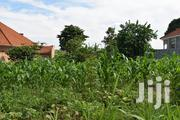 Land In Kira Mamertio Road For Sale | Land & Plots For Sale for sale in Central Region, Kampala
