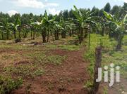 Half Acre in Gayaza-Kiwenda | Land & Plots For Sale for sale in Central Region, Wakiso