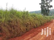 Hot Deal This June. (Half an Acre) on Quick Sale Located at Kitende | Land & Plots For Sale for sale in Central Region, Kampala