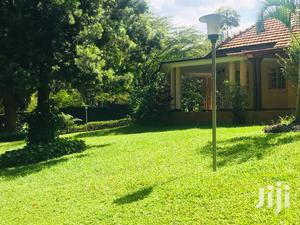 6 Bedroom House For Sale In Kololo