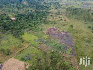 Residential and Farmland for Sale