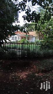 Beautiful Colonial Bungalow for Rent in Kololo With a Swimming Pool   Houses & Apartments For Rent for sale in Central Region, Kampala
