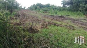 4 Acres Land In Layibi For Sale