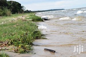 584 Acres Land For Sale In Kalisizo Kyotera District