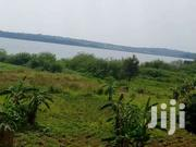 4 Acres Touching Lake Shores On Sale Entebbe | Land & Plots For Sale for sale in Western Region, Kisoro